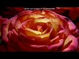 «цветы» под музыку красивые  мелодии - Нежные звуки. Picrolla